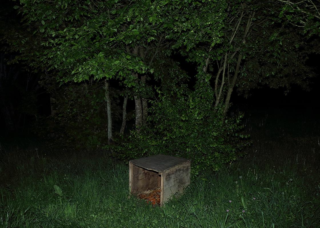 http://www.frederickcarnet.com/files/gimgs/164_whenthenightfalls227.jpg