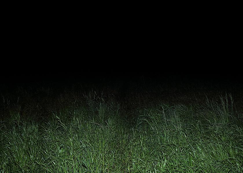 http://www.frederickcarnet.com/files/gimgs/219_whenthenightfalls010.jpg
