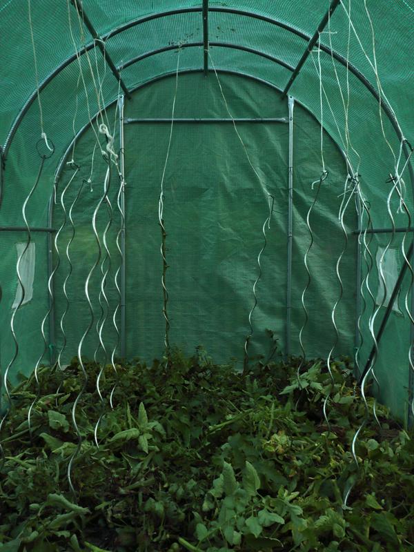 http://www.frederickcarnet.com/files/gimgs/234_jardinoctobre20199971.jpg